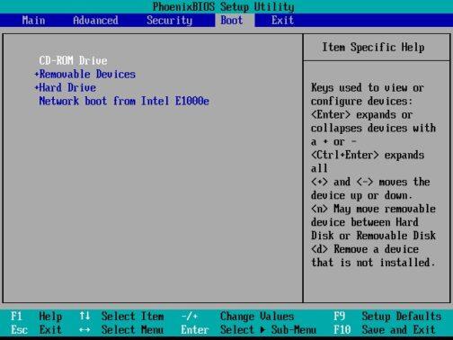 Sekarang atur urutan booting, dengan cara klik tab Boot lalu pilih Boot Device Choices dan kondisikan CD flasdisk berada di urutan pertama